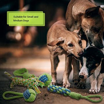 Hundespielzeug, Raffaelo Haustier Hund Seil Spielzeug Baumwolle Seil Hund Tug Krieg Seil Spielzeug Set Dental Zähne Reinigung Chew Spielzeug für Kleine und Mittlere Hunde - Packung mit 4 PCS - 3