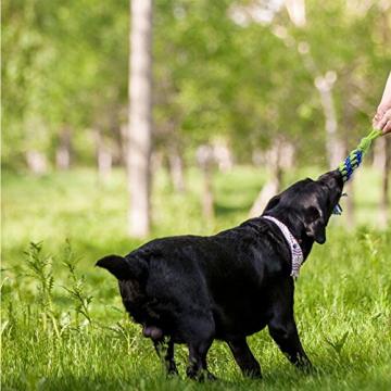 Hundespielzeug, Raffaelo Haustier Hund Seil Spielzeug Baumwolle Seil Hund Tug Krieg Seil Spielzeug Set Dental Zähne Reinigung Chew Spielzeug für Kleine und Mittlere Hunde - Packung mit 4 PCS - 7