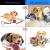 Hundespielzeug Set, ideal für kleine und mittelgroße Hunde, langlebig, sicher und Toxin-frei, Pet Kauen Seil Spielzeug, Hundeseil Spielzeug - Hundespielzeug (10 Artikel) - 3