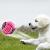 Hundespielzeug Set, ideal für kleine und mittelgroße Hunde, langlebig, sicher und Toxin-frei, Pet Kauen Seil Spielzeug, Hundeseil Spielzeug - Hundespielzeug (10 Artikel) - 8